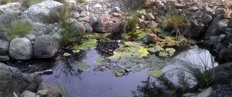 Landscaper Bend Oregon