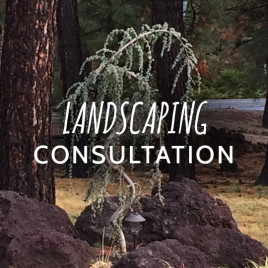 Landscaping Consultation